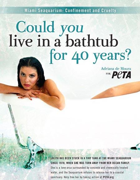 Kuva: PETA