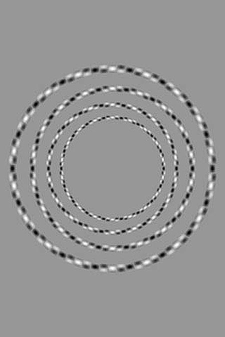 optinenharha23012015