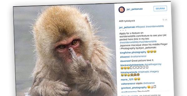 Instagram, Jari Peltomäki