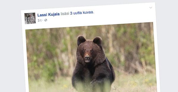 Lassi Kujala, Facebook